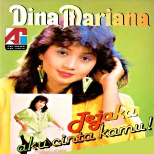 Jejaka Aku Cinta Kamu dari Dina Mariana
