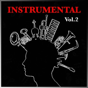 Album Instrumental, vol. 2 from Pascal Tippel