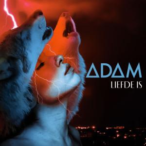 Album Liefde Is (Skoon Weergawe) from Adam
