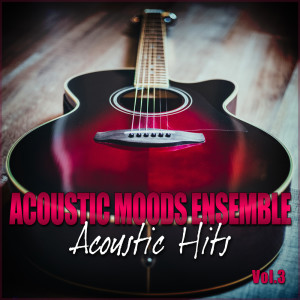 Listen to Time In a Bottle song with lyrics from Acoustic Moods Ensemble