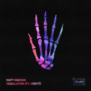 Album Tribulation (feat. VÉRITÉ) from Vérité
