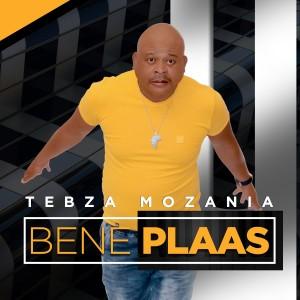 Album Bene Plaas from Tebza Mozania