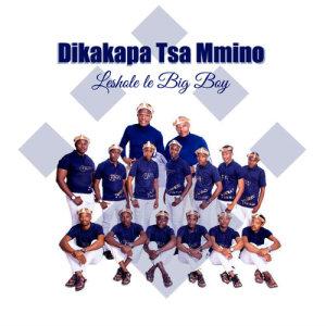 Album Leshole Le Big Boy from Dikakapa Tsa Mmino