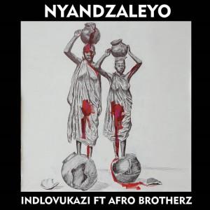 Album Nyandzaleyo from Afro Brotherz