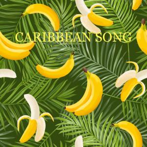 Album Caribbean Song from DJ Blue