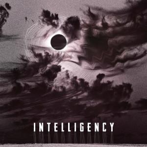 Album Muzika 2020 from Intelligency