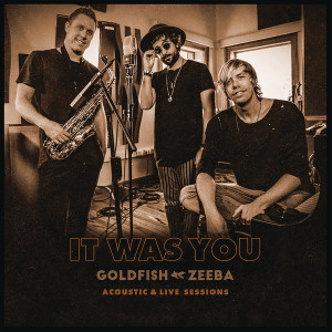 Album It Was You (Acoustic & Live Session) from Goldfish