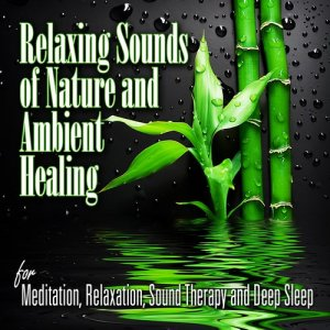 Listen to Rain and Thunder on the Porch for Health and Wellness song with lyrics from Sounds of Nature Relaxation