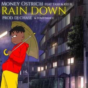 Album Rain Down from Kid X