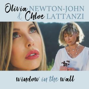 Olivia Newton John的專輯The Window In The Wall