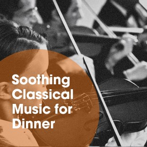 Album Soothing Classical Music for Dinner from Classical Music