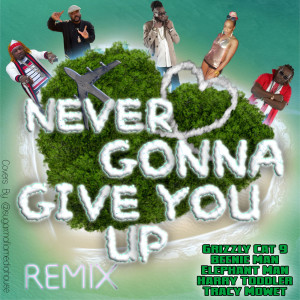 Album Never Gonna Give You up (Remix) from Beenieman