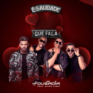 Album É Saudade Que Fala from Avine Vinny