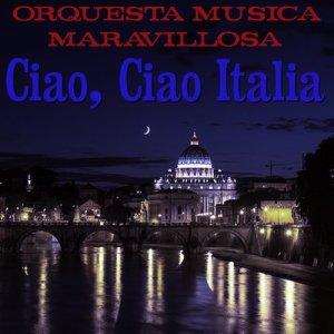 收聽Orquesta Música Maravillosa的Il Silenzo歌詞歌曲