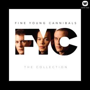 Album The Collection from Fine Young Cannibals