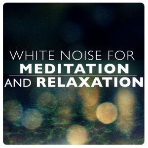 Listen to White Noise: Wind and Rain song with lyrics from Sounds of Nature White Noise for Mindfulness Meditation and Relaxation