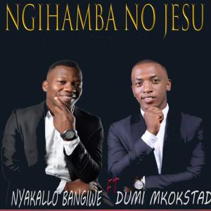 Album Ngihamba No Jesu from Dumi Mkokstad