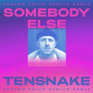 Album Somebody Else from Boy Matthews