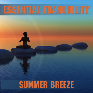 Album Breeze from Essential Band