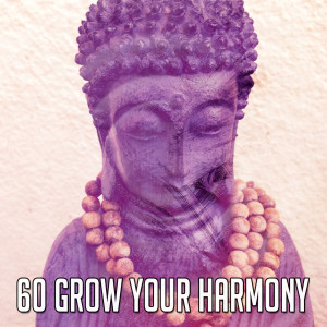 Yoga Tribe的專輯60 Grow Your Harmony