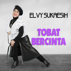 Album Tobat Bercinta from Elvy Sukaesih