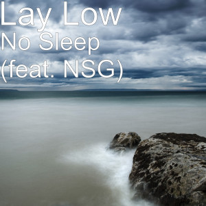 Album No Sleep (feat. NSG) from Lay Low