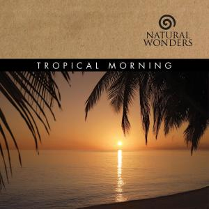 Tropical Morning 2006 David Arkenstone
