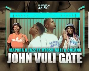 Album John Vuli Gate from Ntosh Gazi
