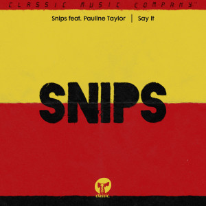 Album Say It (feat. Pauline Taylor) from Snips