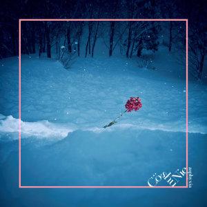 Cö shu Nie的專輯asphyxia