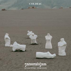 Sampaikan (Acoustic) dari Coldiac