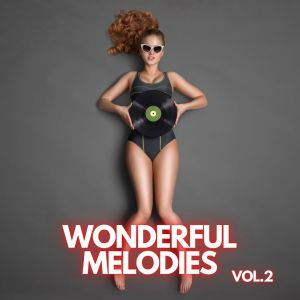 Album Wonderful Melodies vol.2 from Eric Hammerstein