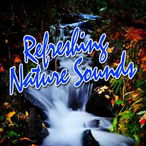 Album Refreshing Nature Sounds from Deep Sleep Music