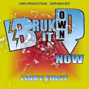 Album Bruk It Down Now from Linky First