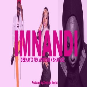 Album Imnandi Ice Cream Single from Shavool