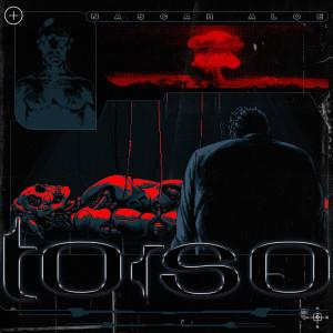 Album Torso (Explicit) from Nascar Aloe