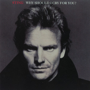 Album Why Should I Cry For You? from Sting