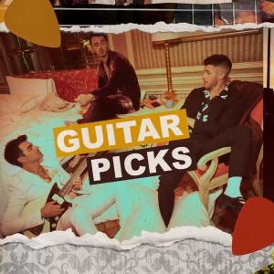 Album GUITAR PICKS from Jonas Brothers