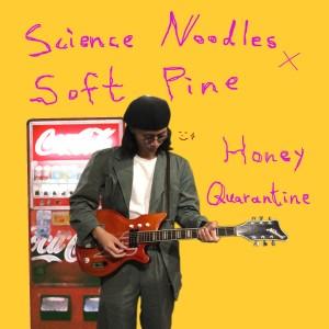 Album Honey Quarantine from Soft Pine