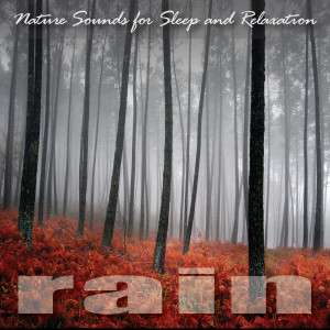 Rain的專輯Nature Sounds for Sleep and Relaxation