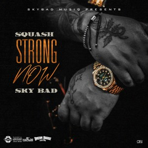 Listen to Strong Now (Explicit) song with lyrics from Squash