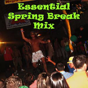 Ultimate Tribute Stars的專輯50 Hot Hits for Spring Break