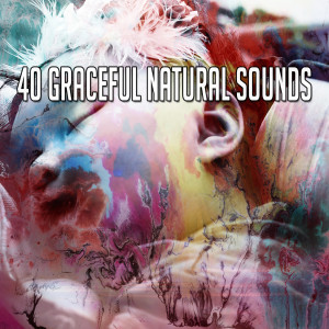 Monarch Baby Lullaby Institute的專輯40 Graceful Natural Sounds