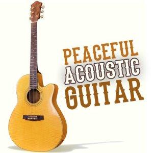 Listen to Strange Vibrating Guitar song with lyrics from Michael Panasuk