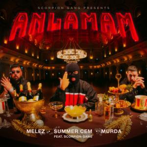 Album ANLAMAM from Summer Cem