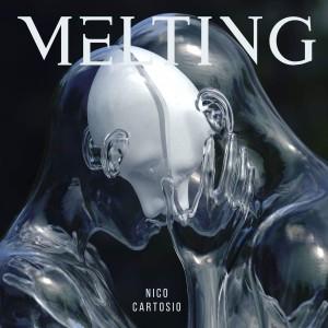 Nico Cartosio的專輯Melting