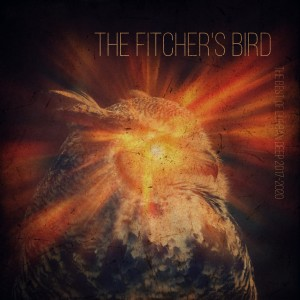Album The Fitcher's Bird (The Best of Durban Deep 2017 - 2020) from Durban Deep