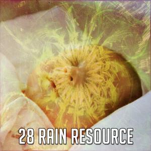 Rain Sounds的專輯28 Rain Resource