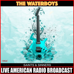 Album Saints & Sinners from The Waterboys