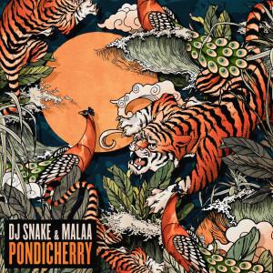 Album Pondicherry from DJ Snake
